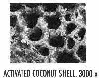 [Activated Coconut Shell]